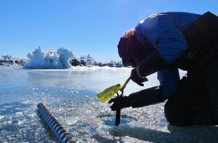 Antártica propensa a 'tremores de gelo' todas as noites, conclui estudo